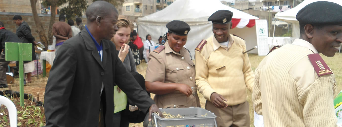 Francis-Wachira-a.k.a-Rabbit-King-shows-government-officers-how-to-handle-rabbits-during-Farmer-Field-day-at-Umoja.-June-2013